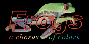 Frogs_title_panel_logo