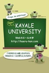 Kayaledm_2