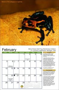 February_spread_370